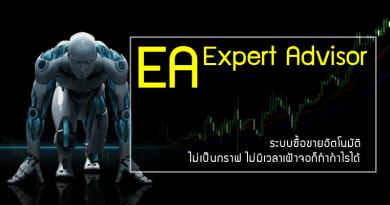 Expert Advisor (EA) คืออะไร