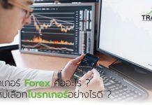 โบรกเกอร์ Forex คืออะไร?