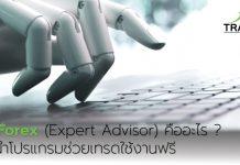 EA Forex (Expert Advisor) คืออะไร?